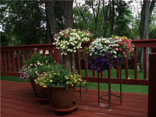 Pinterest Home And Garden Ideas