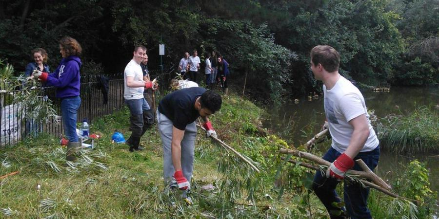 Improving Stave Hill Habitats with TCV