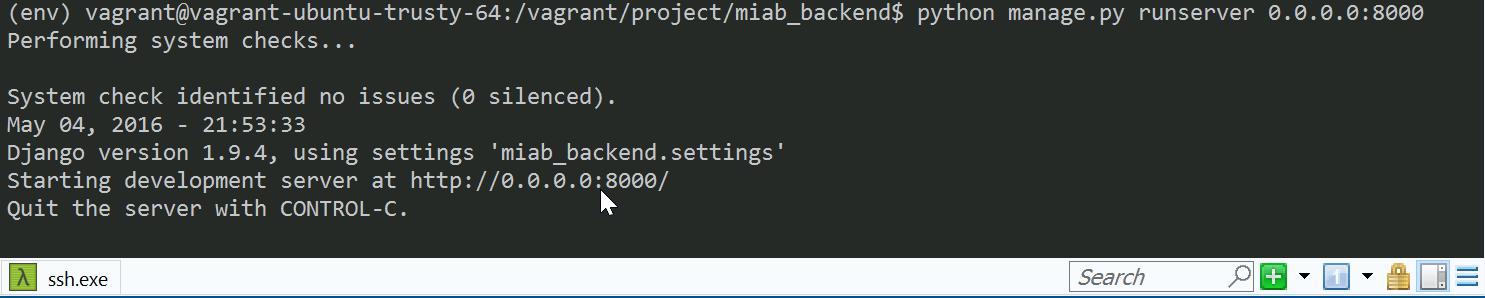 Python runserver shell
