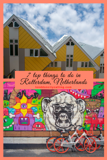Top things to do in Rotterdam Netherlands