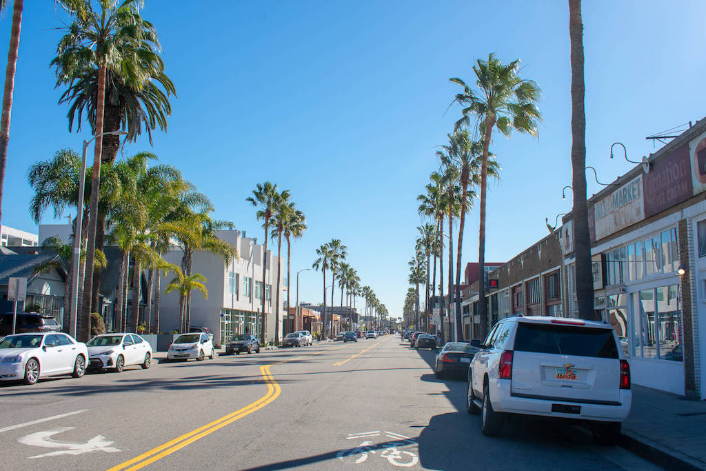 Areas of LA - Abbot Kinney Road IN Venice lined with palm trees
