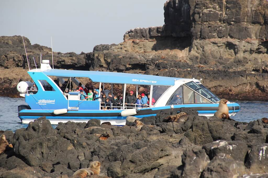 Eco Boat Adventures Phillip Island