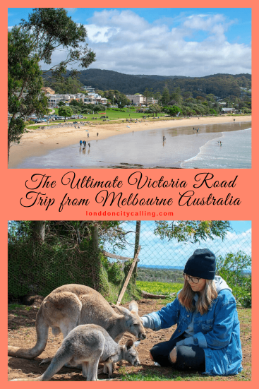 Ultimate Victoria Road Trip from Melbourne Australia Pin