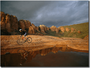 A biker cycles across the desert poster