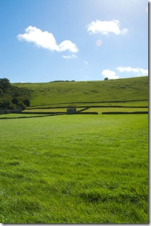 peak district field by swh