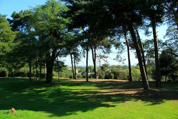 Hampstead heath views