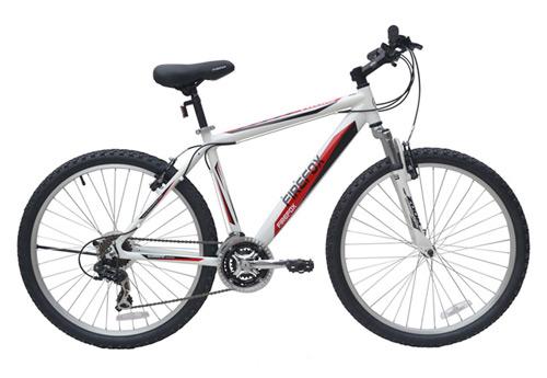 Cyclone bike