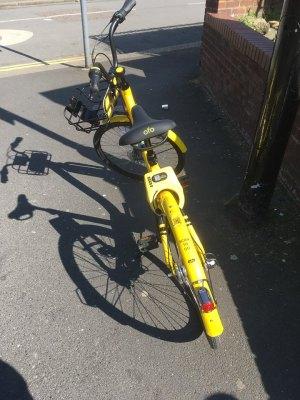 ofo bike parking