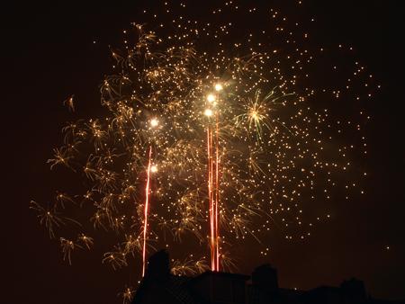 London Fireworks Night 2014