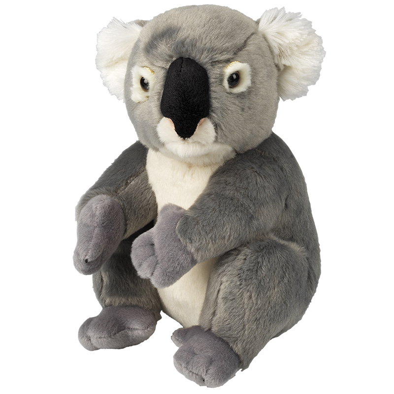 National Geographic Plush Toy Koala Bear London Drugs