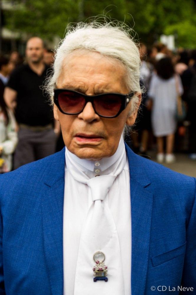 Karl Lagerfeld Dior Homme