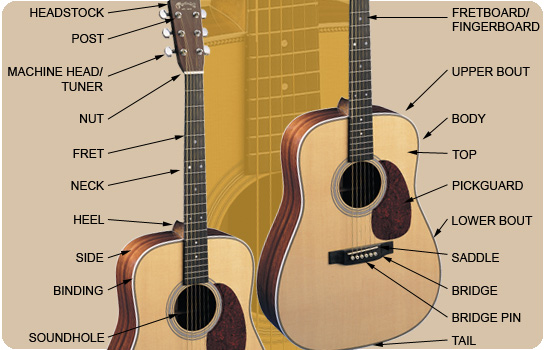 acoustic guitar lesson for beginners How To Play Acoustic Guitar