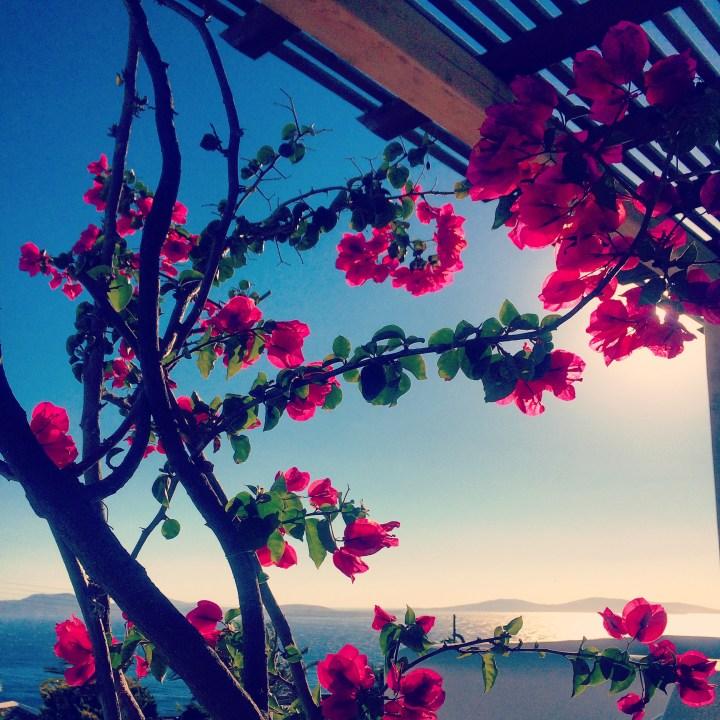 greece_mykonos_beach_view