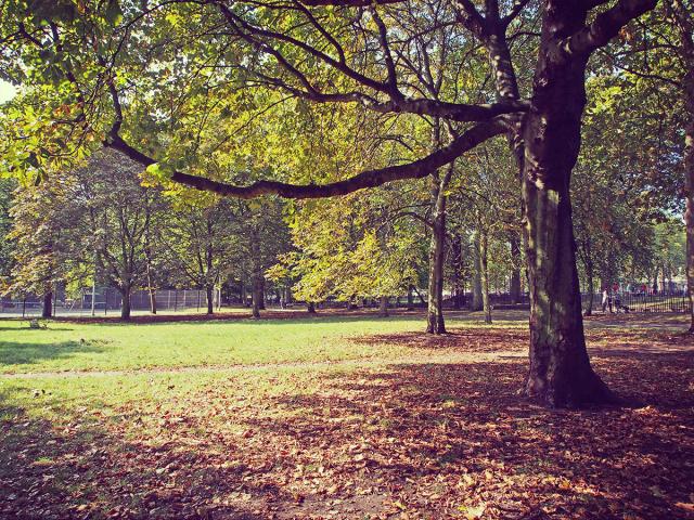 London_Autumn_park_fall