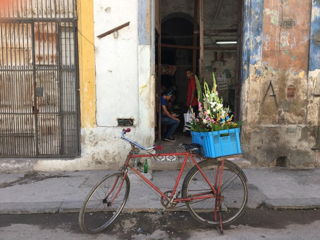 Havana_florist