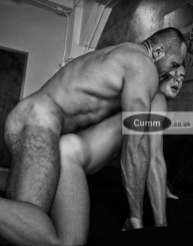 gay arse for gay muscle daddy