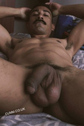 bull black daddy nude in bed