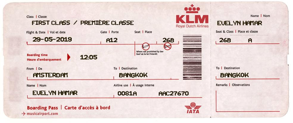 vliegticket nep voorbeeld