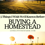 5 Things I Wish We'd Known Before Buying a Homestead