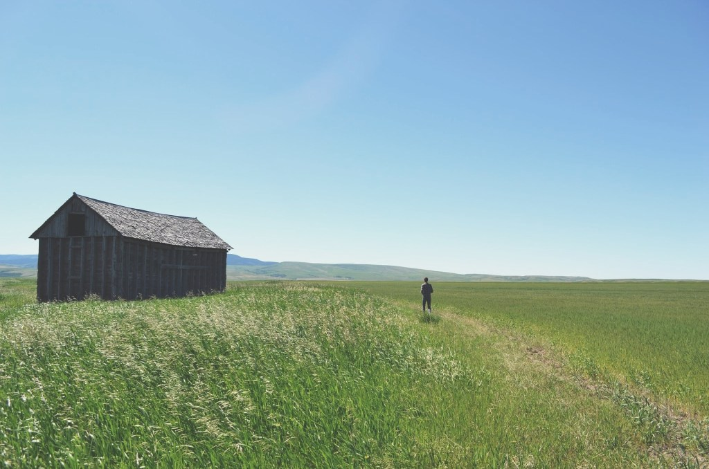 Buying a homestead can be an overwhelming process. Here are five things we wish we'd known at the very beginning of our homestead hunt.