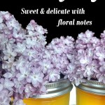 Looking for new uses for lilac? Well, I have the perfect lilac preservation method! Lilac jelly is delicious way to celebrate spring. This delicate floral jelly is a wonderful gift idea. So try making your own unique jelly with this easy canning recipe!
