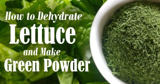 Turn Lettuce into Nutrient-Rich Green Powder