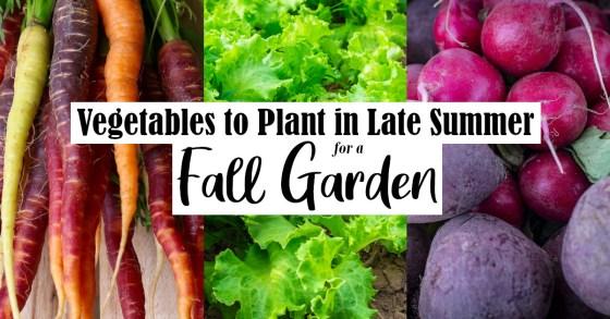 9 Best Vegetables for Your Fall Garden
