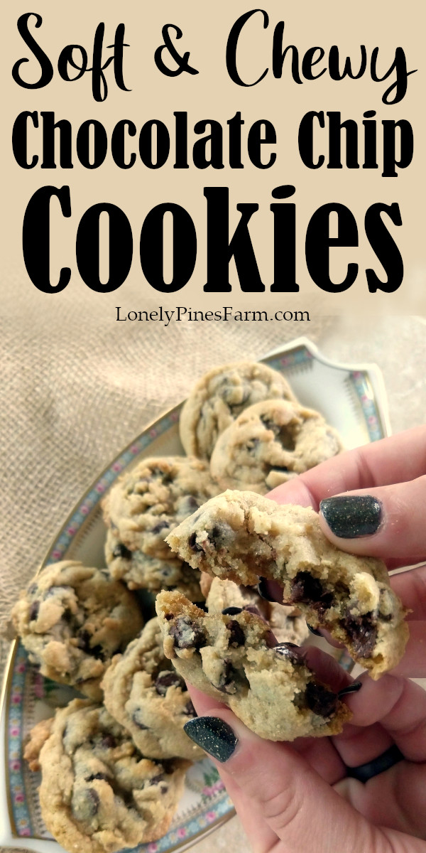Everybody needs a delicious, reliable chocolate chip cookie in their arsenal. These perfectly soft cookies are years in the making and you won't be disappointed. So amazingly chewy & gooey - these chocolate chip cookies are always a huge hit!