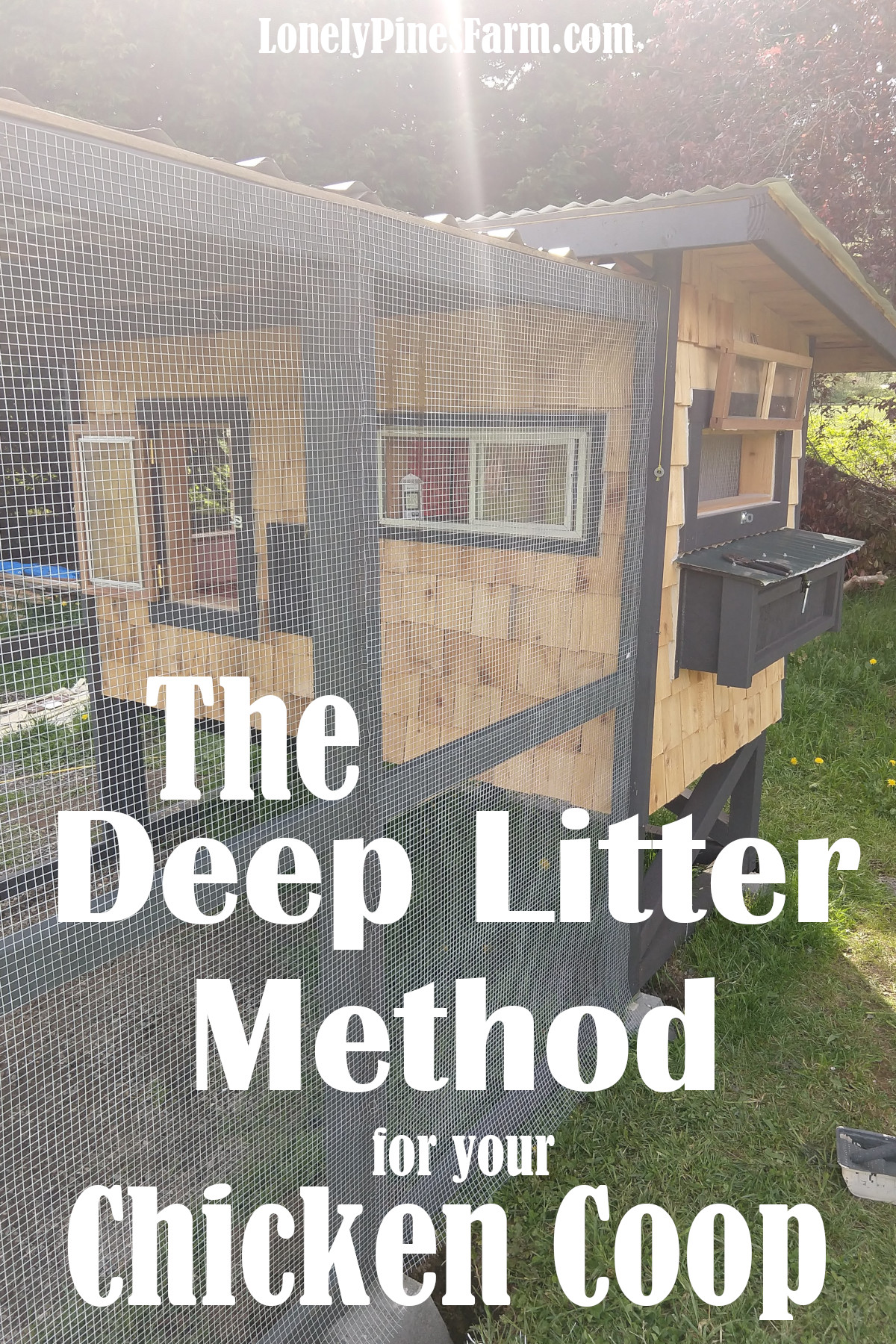 Save money & time with your chicken coop by using the Deep Litter Method for waste management. Zero daily maintenance and the composting action creates natural warmth for you chickens. That makes this process ideal for colder climates and harsh winter.
