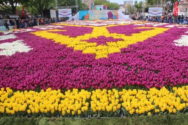 The 1,453-square-metre tulip carpet in Istanbul, Turkey. Image: Ibrahim Halil Cekici/Anadolu Agency/Getty Images
