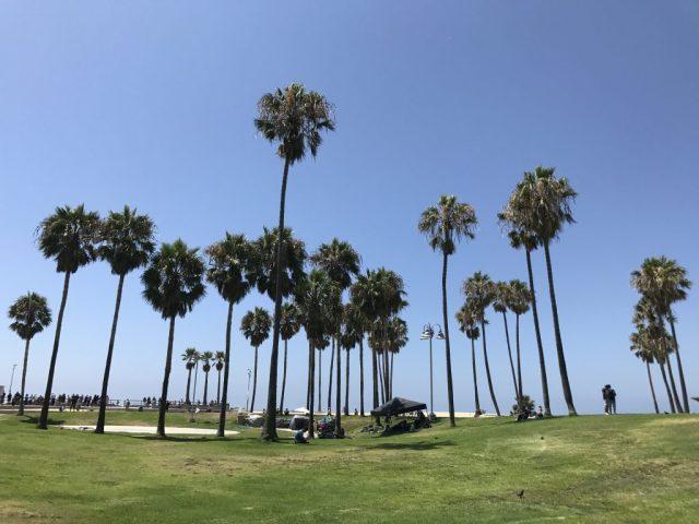 Come organizzare un viaggio in California fai da te
