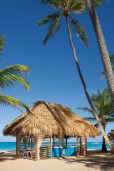 Dreams Punta Cana Resort & Spa - Activities - Beachside Spa Cabin