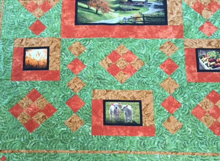 Carolyn Wiley's 2018 Farm Tour Quilt