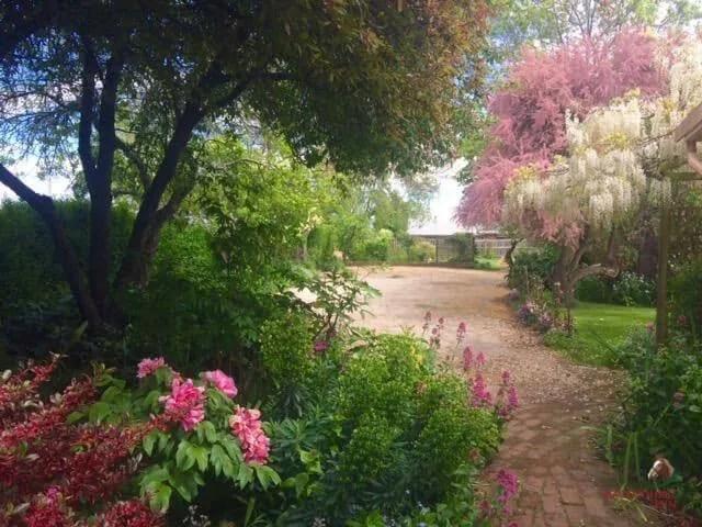 Spring cottage garden at Longford's Racecourse Inn