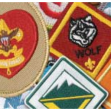 Sample of some BSA Rank Patches