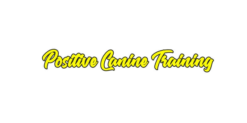 PositivecanineTraining.com