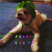 Odes To Joy: Idles interview Frankie Cosmos
