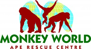 MonkeyWorldLogoCopyright