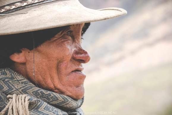 Un pastore della cordillera peruviana