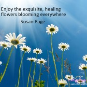 Enjoy the Flowers, with Looking Beyond, by Looking Beyond Master Psychic Readers