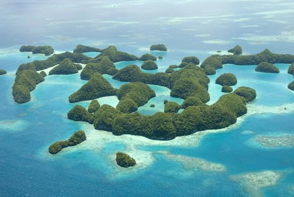 上萬隻水母復育成功強勢回歸!帛琉著名水母湖封閉兩年再度開放浮潛 - 好想去喔