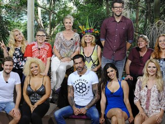 Dschungelcamp 2015: Das große Wiedersehen! - TV News