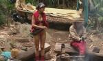 Dschungelcamp 2012: Micaela Schäfer, Borat und geknackte Kakerlaken