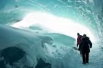 """The Thing"": Sci-Fi-Horror Pur! Jetzt auf DVD und Blu-Ray! - Kino"
