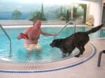 Der V.I.P. Hundeprofi: Dr. Werner Mang, Ingrid Steeger und Elke Heidenreich lernen täglich - TV News
