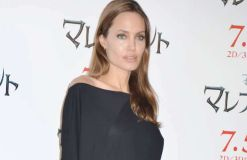 Angelina Jolie: Politik oder Diplomatie?
