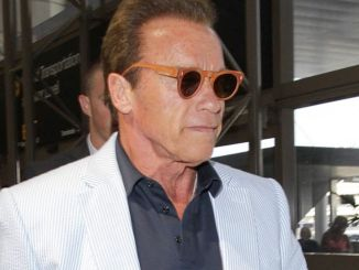 Arnold Schwarzenegger Sighted Arriving at LAX Airport on June 23, 2016