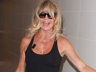 Goldie Hawn Sighted at LAX Airport