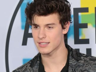 Shawn Mendes - 2017 American Music Awards - 2