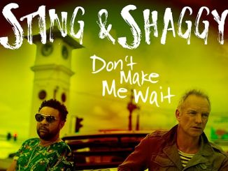 Shaggy Sting - Dont Make Me Wait Cover thumb